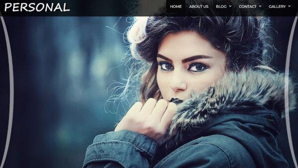 16. Personal Premium – Mobile Friendly WordPress Theme