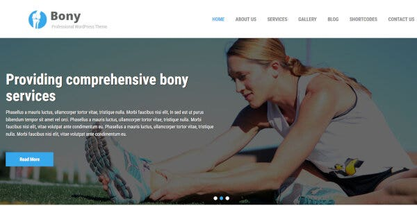 Bony – FontAwesome Integrated WordPress Theme