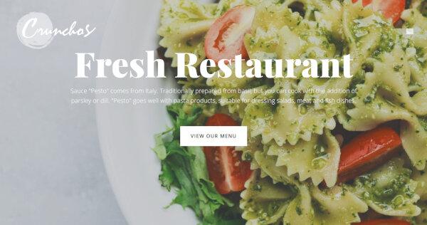 Crunchos -SEO Ready WordPress Theme