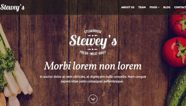 Steweys - Ninja Forms supported WordPress Theme