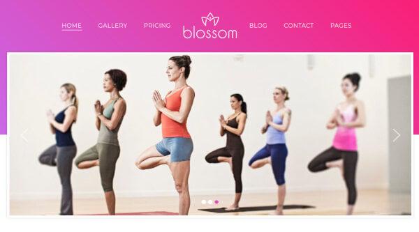 17. Blossom – Auto Install WordPress Theme