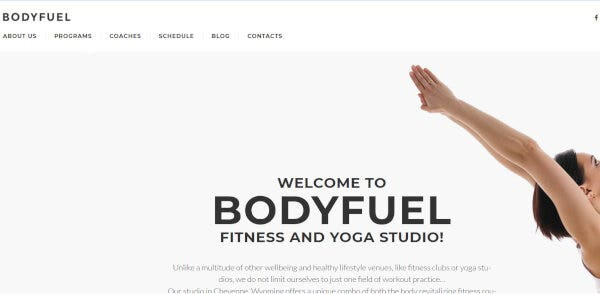 7. BodyFuel – Drag and Drop WordPress Theme