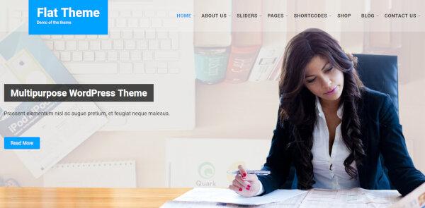 7. Flat Pro – SEO Plugins WordPress Theme