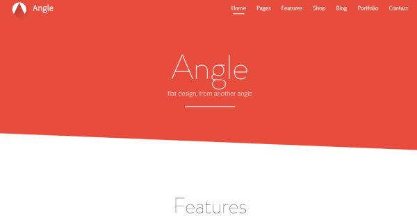 14. Angle – Responsive WordPress Theme