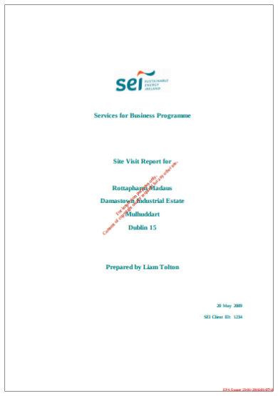 simple site visit report