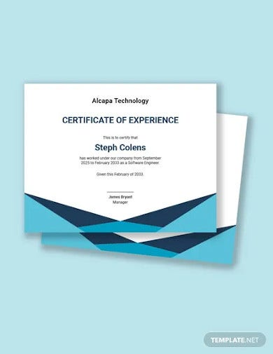 software experience certificate template