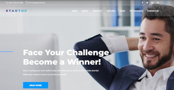 startup – customized wordpress theme