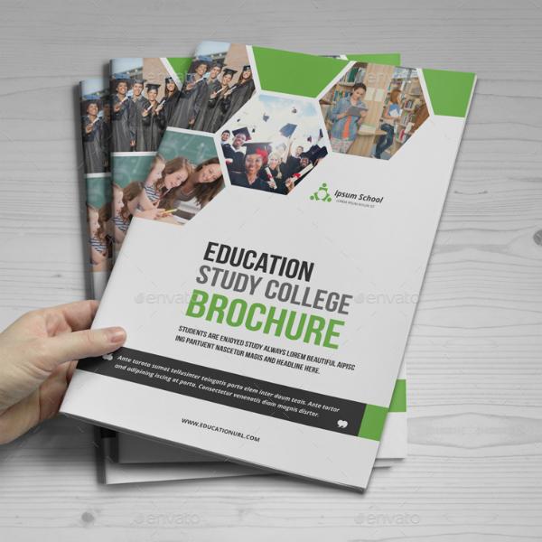 study college education brochure design