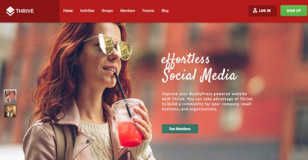 Thrive – Responsive WordPress Theme