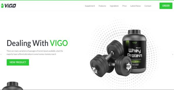 Vigo - 16+ different Sections WordPress Theme