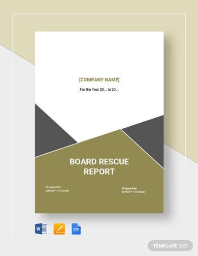 board rescue report