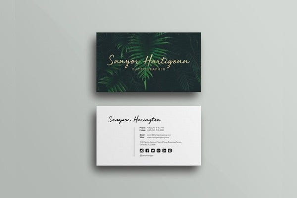 photography-business-card-preview