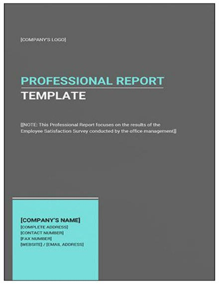 professional report template mock up