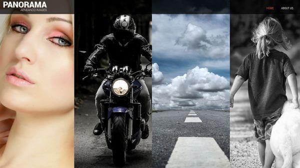 Panaroma Pro – Social Icons WordPress Theme