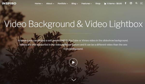 Inspiro – Video Background WordPress Theme
