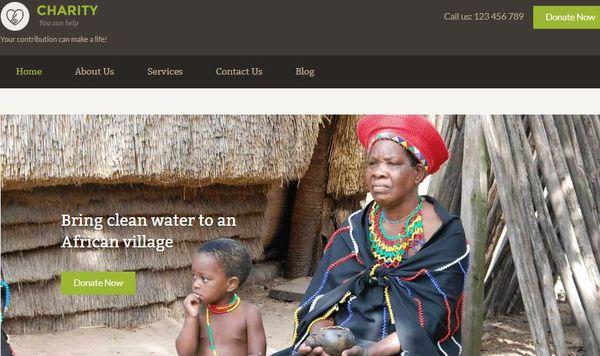 Charity – Color Switcher WordPress Theme