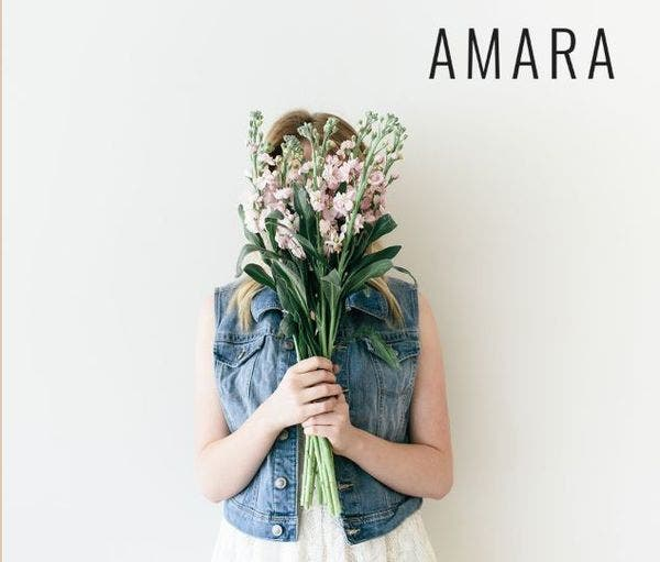 Amara - A Theme for entrepreneurs