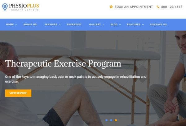 20+ Physiotherapy and Chiropractor WordPress Themes