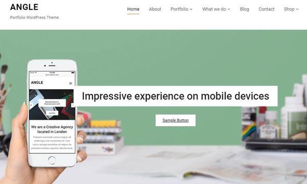 Angle – Portfolio WordPress Theme