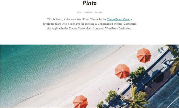 Pinto – Lightweight WordPress Theme