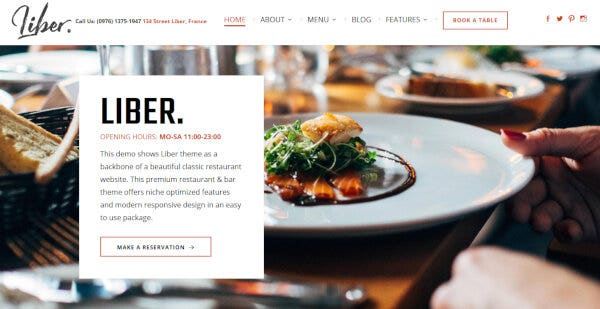 Liber – Fully Customizable WordPress Theme