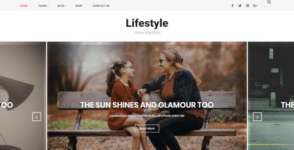Lifestyle – Full Documentation WordPress Theme