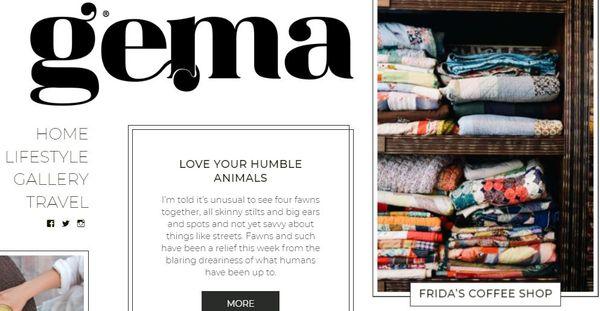 Gema – SEO Friendly WordPress Theme