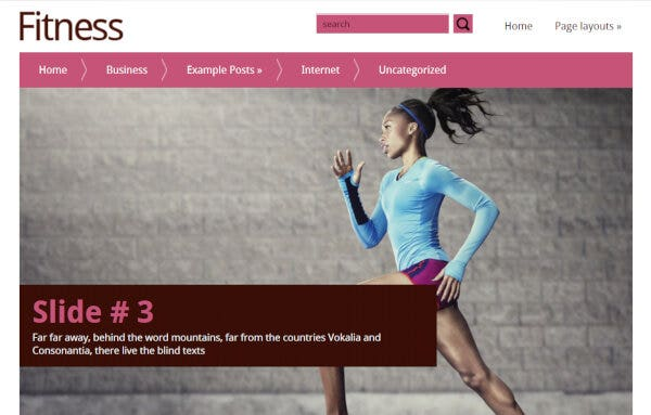 Fitness- Custom Widgets Ready WordPress Theme