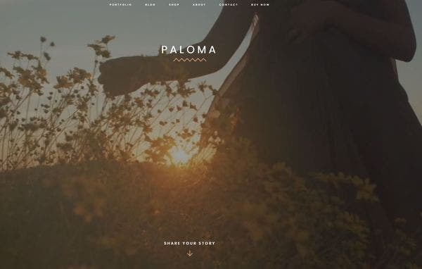 Paloma –Video Header WordPress Theme