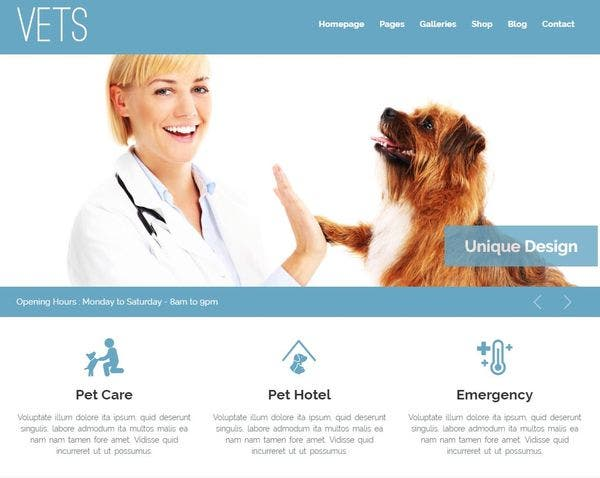 VETS – Widget Ready WordPress Theme