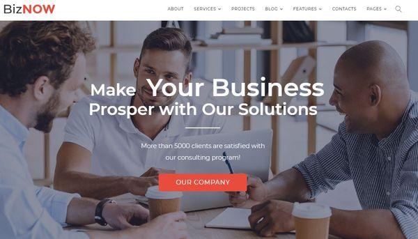Biznow – Well-Documented WordPress Theme