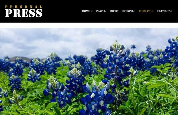 Press– SEO friendly WordPress Theme