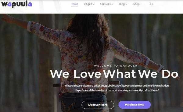 Wapuula – Foundation Framework WordPress Theme