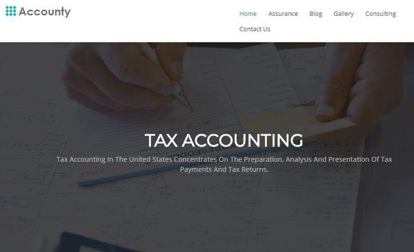 Accounty – Cross-browser Compatible WordPress Theme