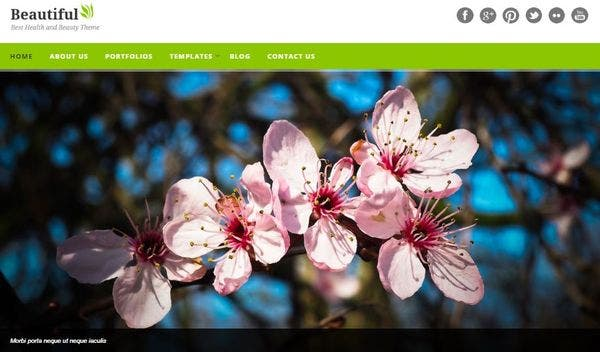 Beautiful – Testimonial WordPress Theme