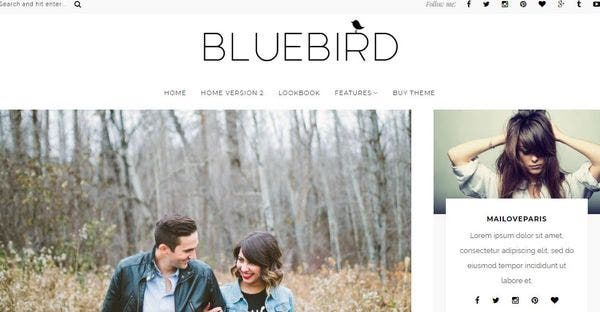 BlueBird – Blog Centric WordPress Theme