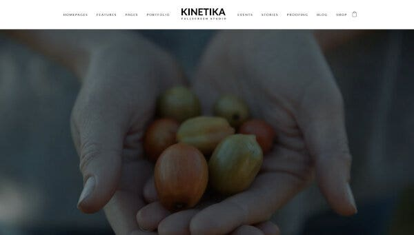 Kinetika – Retina Ready WordPress Theme