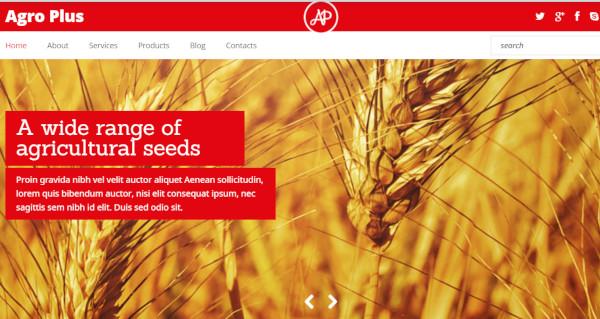 agro plus 600 google fonts wordpress theme