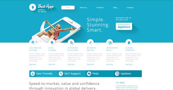 best app built in customizer wordpress theme