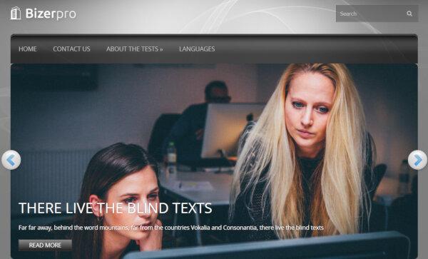 BizerPro – Multicolor Content WordPress Theme