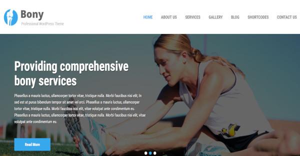 bony – highly responsive wordpress theme