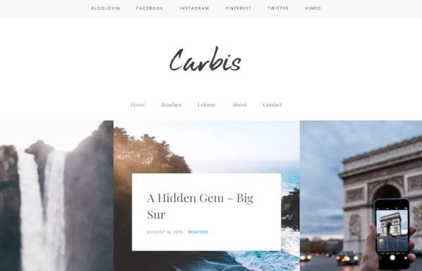 carbis jetpack support wordpress theme