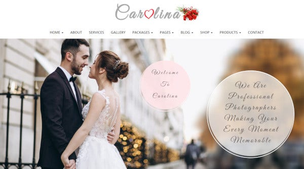 carolina redux framework wordpress theme