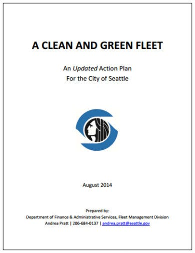 city cleaning action plan template