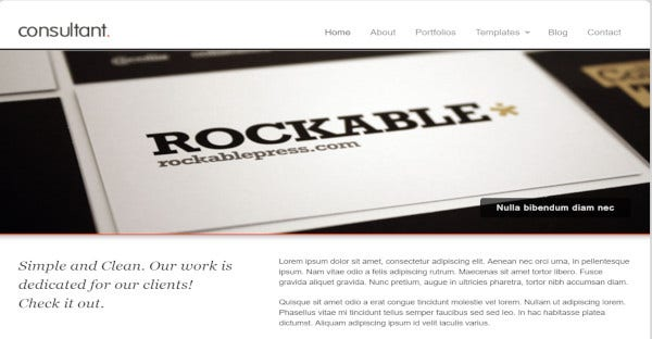 consultant responsive wordpress theme