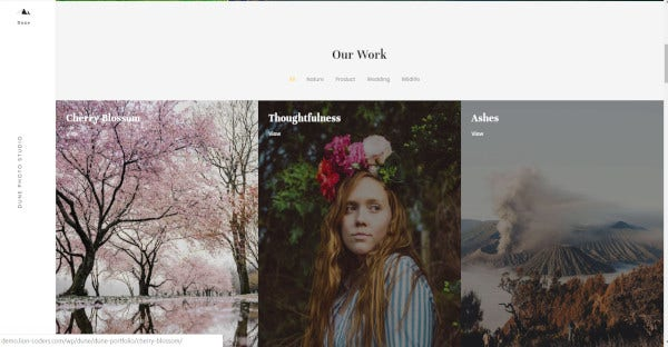 Dune – Multi-Purpose WordPress Theme