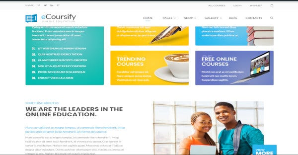 ecoursify woocommerce wordpress theme