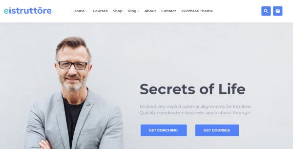 eistruttore seo friendly wordpress theme