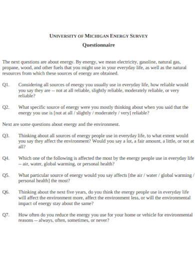 energy survey questionnaire in pdf