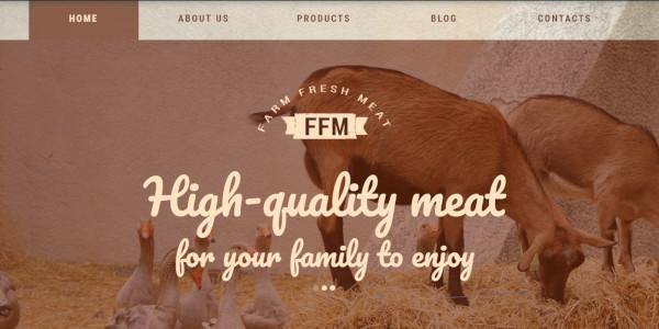 fem-wpml-wordpress-theme
